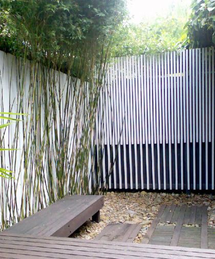 H House courtyard & rear batten screen